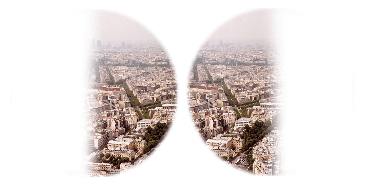 In addition to being upside-down, images arrive at your retina split in half and distorted.